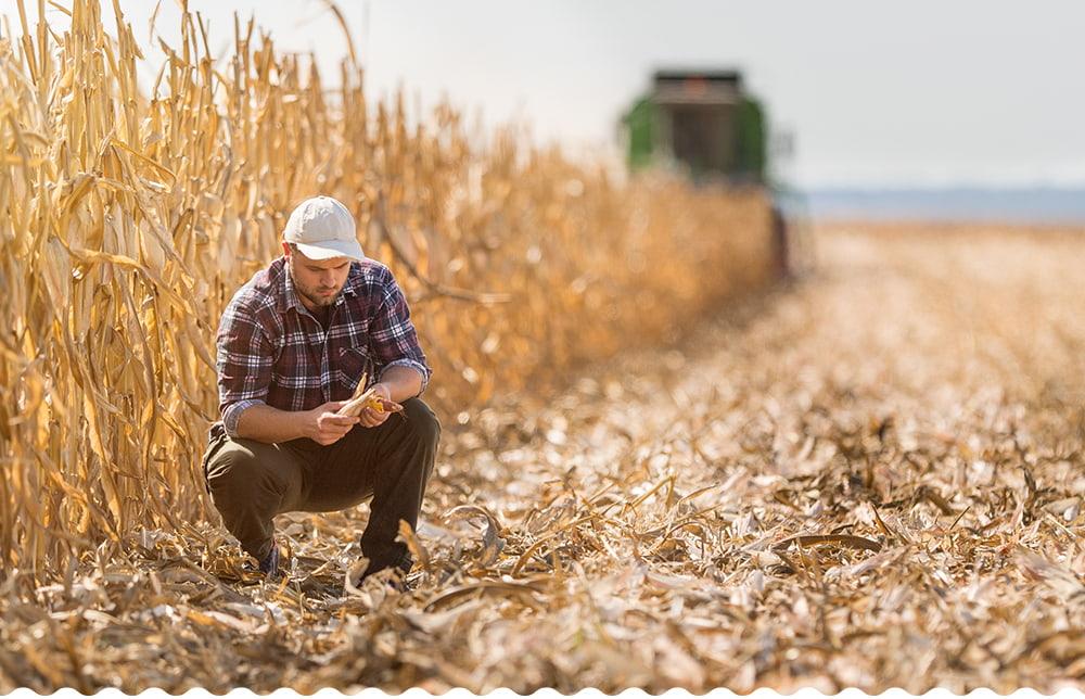 Ne dorim o agricultură sustenabilă pe termen lung.