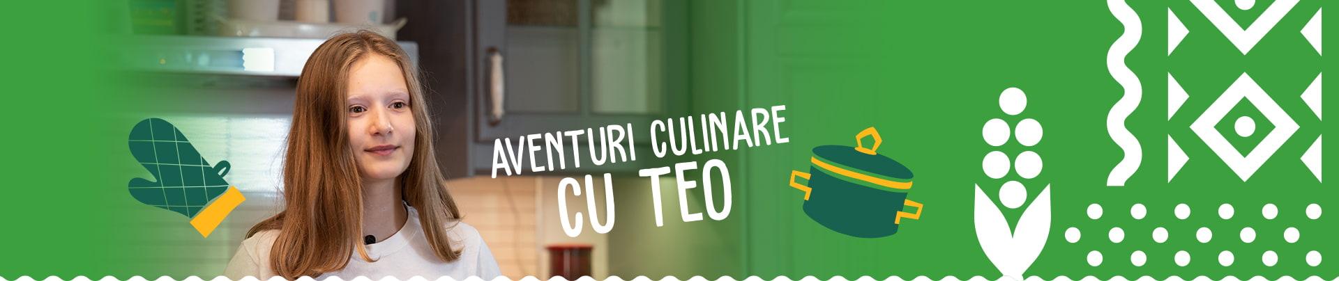 Header Aventuri Culinare Cu Teo